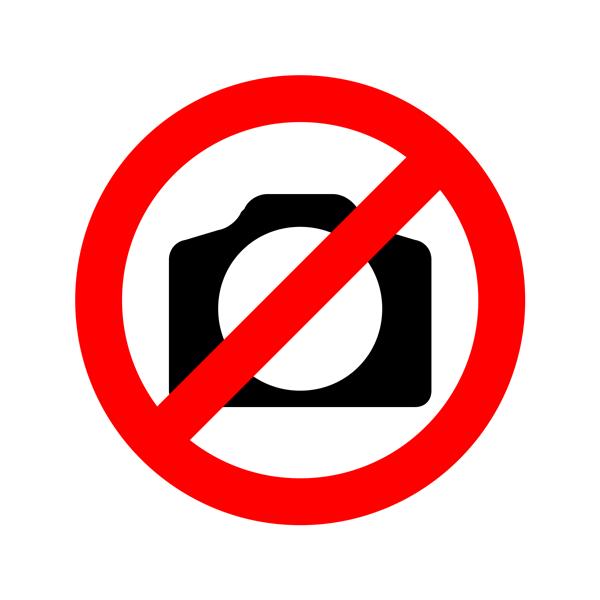 chrome car logo